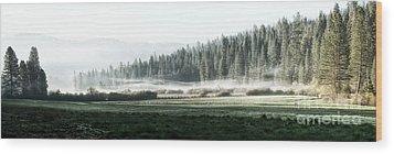 Misty Morning In Yosemite Wood Print by Jane Rix