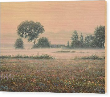 Misty Morning Wood Print by James W Johnson