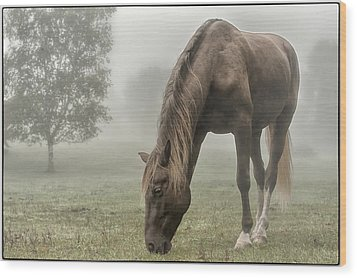 Misty Morning Wood Print by Peter Lindsay