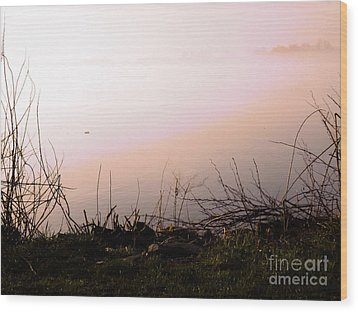 Wood Print featuring the photograph Misty Morning by Robyn King