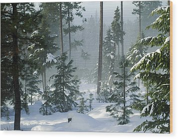 Misty Morning Snow Wood Print by Annie Pflueger