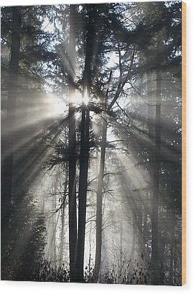 Misty Morning Sunrise Wood Print by Crista Forest