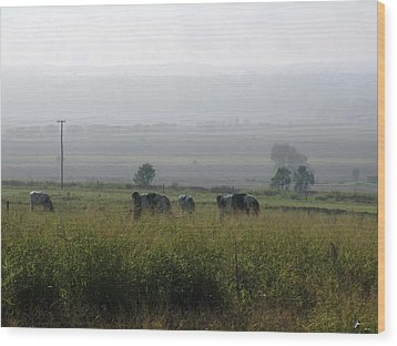 Wood Print featuring the photograph Misty Morning by Therese Alcorn