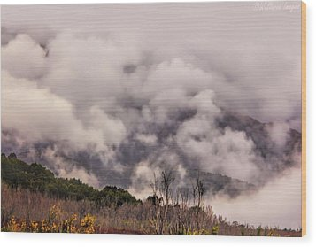 Misty Mountains Wood Print by Wallaroo Images