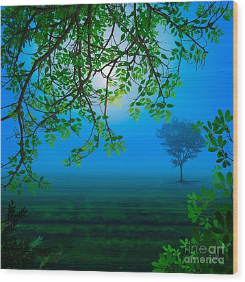 Misty Night Wood Print by Peter Awax