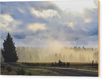 Misty Spring Morning Wood Print by Annie Pflueger