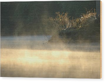 Misty Sunrise Wood Print by Robert Culver