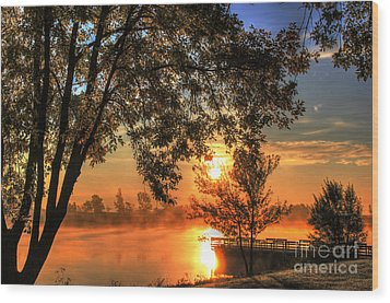 Misty Sunrise Wood Print by Thomas Danilovich