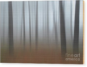 Wood Print featuring the photograph Misty Thoughts by Simona Ghidini