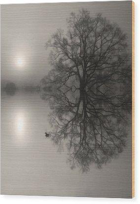Misty Water Oak Wood Print by Deborah Smith