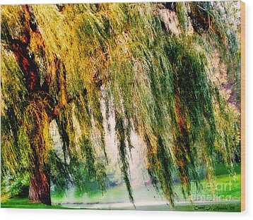 Misty Weeping Willow Tree Dreams Wood Print by Carol F Austin