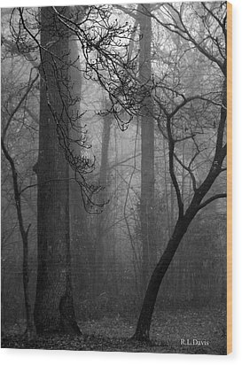 Misty Woods Wood Print by Rebecca Davis