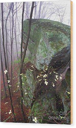 Misty Woods Wood Print by Thomas R Fletcher