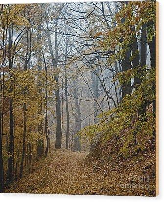 Misty Yellow Wood Print by Barbara McMahon