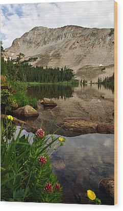 Mitchell Lake Reflections Wood Print by Ronda Kimbrow