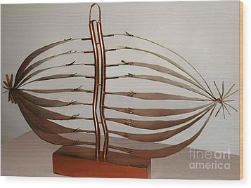 Mitotic Spindle Wood Print by Franco Divi
