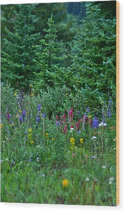 Wood Print featuring the photograph Mixed Flowers by Jeremy Rhoades