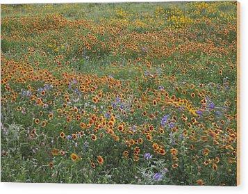 Mixed Wildflowers Blowing Wood Print