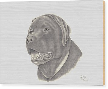 Wood Print featuring the drawing Mocha by Patricia Hiltz