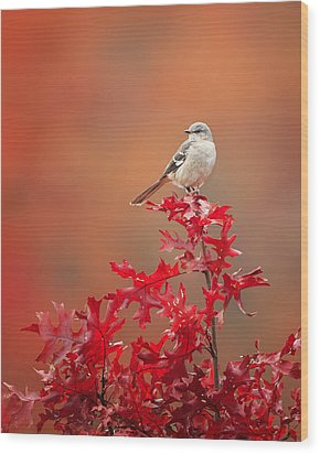 Mockingbird Autumn Wood Print by Bill Wakeley
