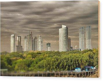 Modern Buenos Aires Tilt Shift Wood Print by For Ninety One Days