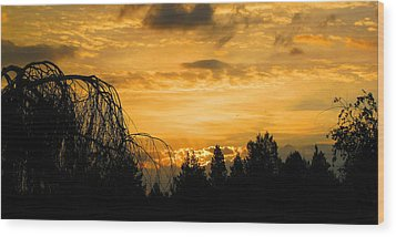 Modoc Sunrise Wood Print by Jennifer Muller