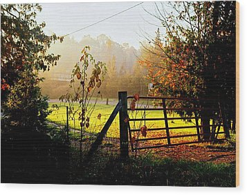 Wood Print featuring the photograph Moffit Bridge  by Daniel Thompson