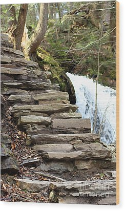 Mohawk Falls Steps Wood Print by Patti Whitten