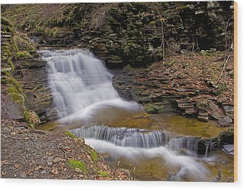 Mohican Falls In Spring Wood Print by Shelly Gunderson