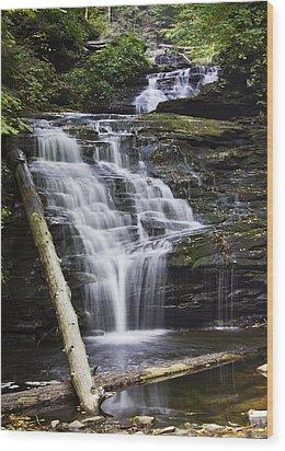 Mohican Falls Wood Print