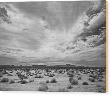 Mojave National Preserve Wood Print by Mike Herdering