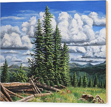 Molas Pass Area Wood Print