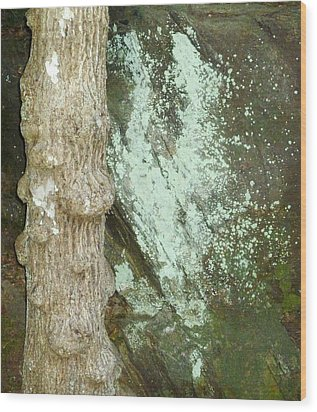 Mold On Rock Wood Print by Pete Trenholm