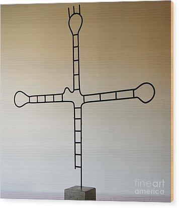 Molecular Religion Wood Print by Franco Divi
