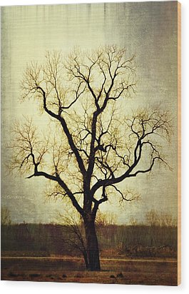 Molted Tree Wood Print by Marty Koch
