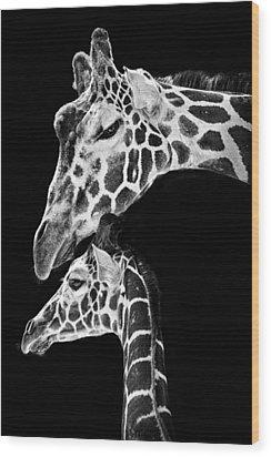 Mom And Baby Giraffe  Wood Print by Adam Romanowicz