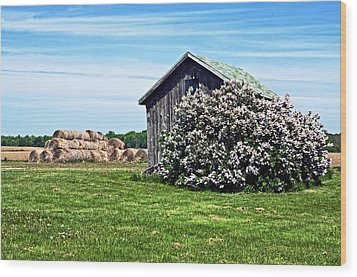 Moms Lilac Barn Wood Print by Cheryl Cencich