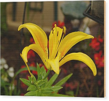 Wood Print featuring the pyrography Mom's Yellow Flower by B Wayne Mullins