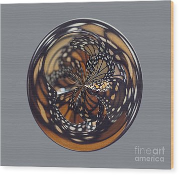 Monarch Butterfly Abstract Wood Print by Darleen Stry
