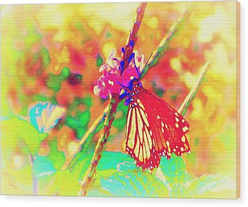 Wood Print featuring the painting Monarch Butterfly  by David Mckinney