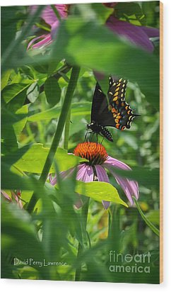 Monarch Butterfly Deep In The Jungle Wood Print by David Perry Lawrence