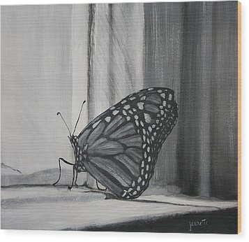 Monarch In The Window Wood Print