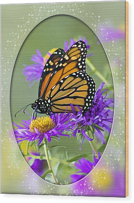Monarch On Astor Wood Print by Judy  Johnson