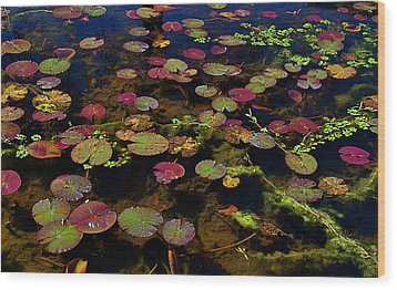 Monet Wood Print by Linda Dyer Kennedy