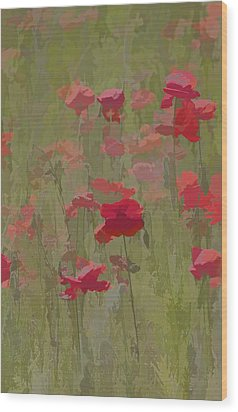 Monet Poppies Wood Print by David Letts