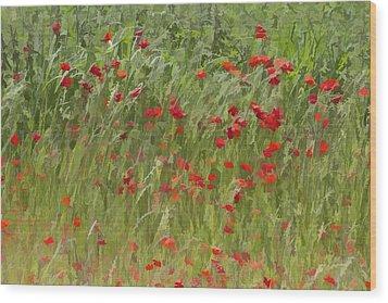 Monet Poppies IIi Wood Print