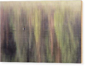 Wood Print featuring the photograph Monet's Duck by Ken Dietz