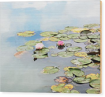Wood Print featuring the photograph Monet's Garden by Brooke T Ryan