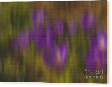 Monet's Garden Wood Print by Sandi Mikuse