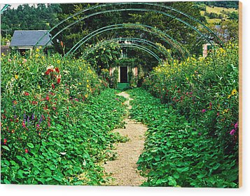 Monet's Gardens At Giverny Wood Print by Jeff Black